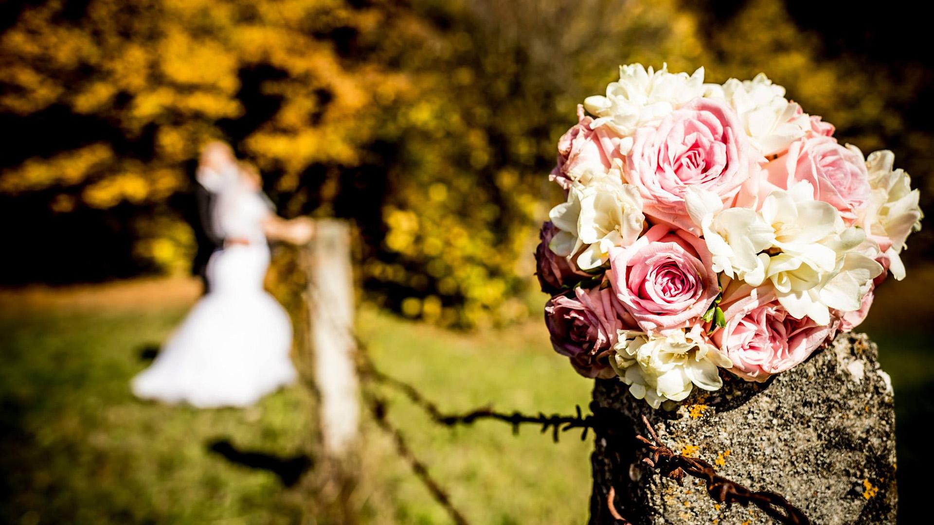 fotografie-nunta-toamna